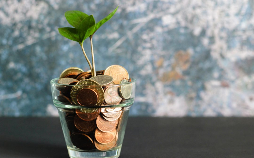 Duurzame banken in Nederland