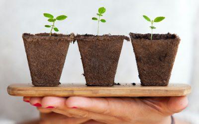 Trends binnen duurzaamheid